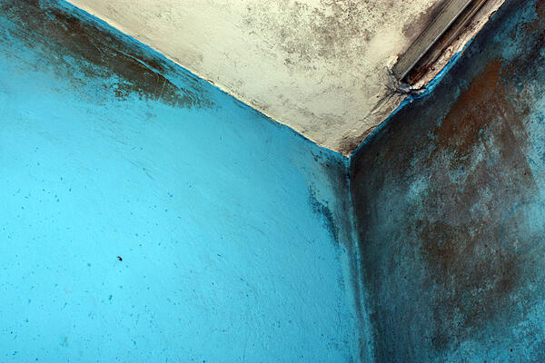 Moldy walls and ceiling